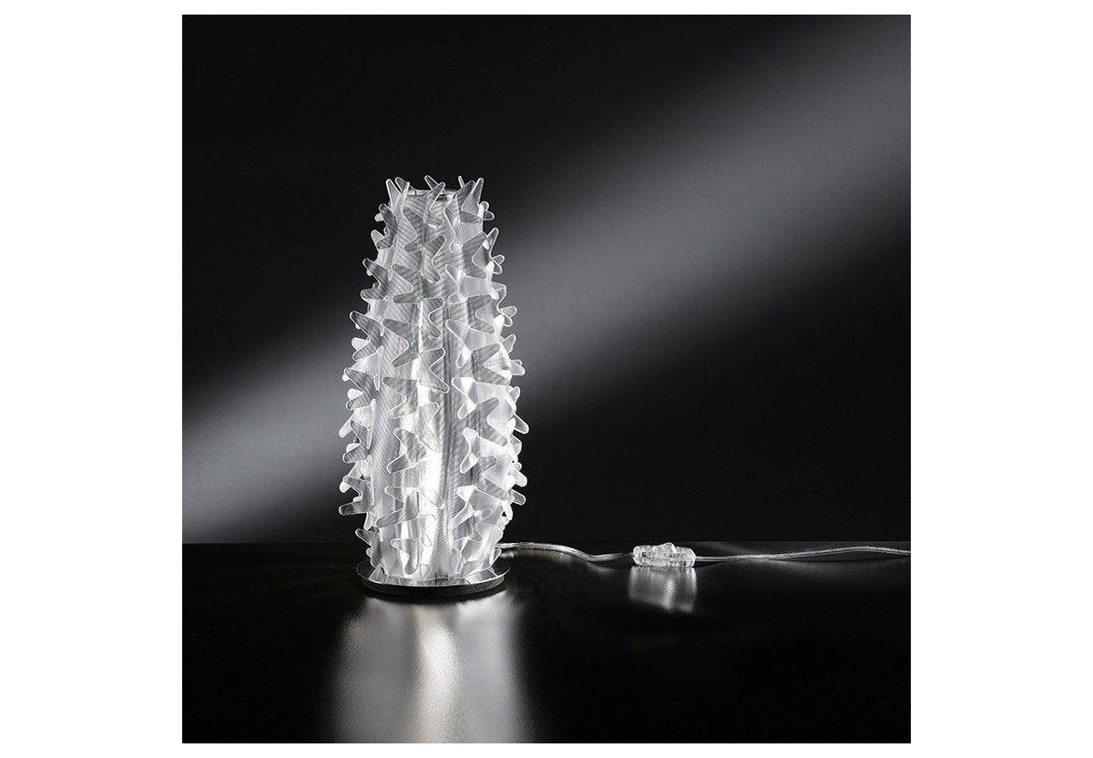 Cactus Prisma